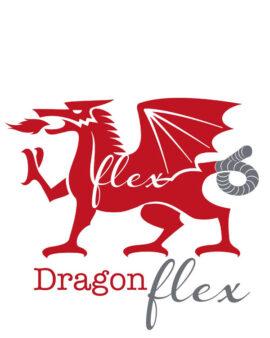 Dragon Flex Flexible Twin Wall Flue Liner